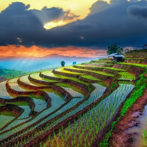 Chiang_Mai_-_Image